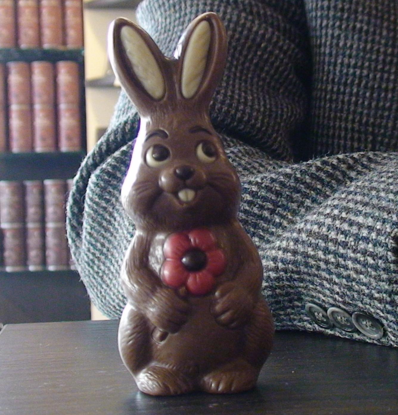 Günther the Bunny